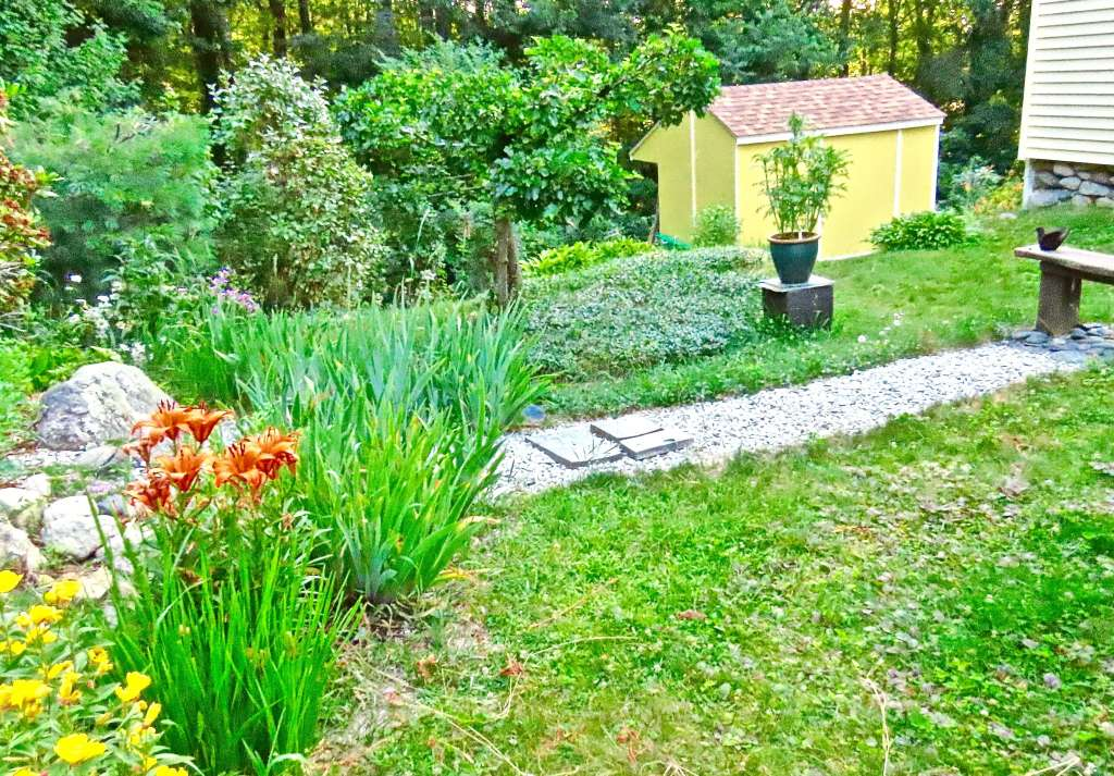 A coat of paint on one small structure can often uplift a a whole yard.